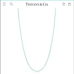 Tiffany Blue® Enamel Finish Pendant Chain